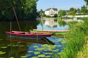 Rivière Sarthe